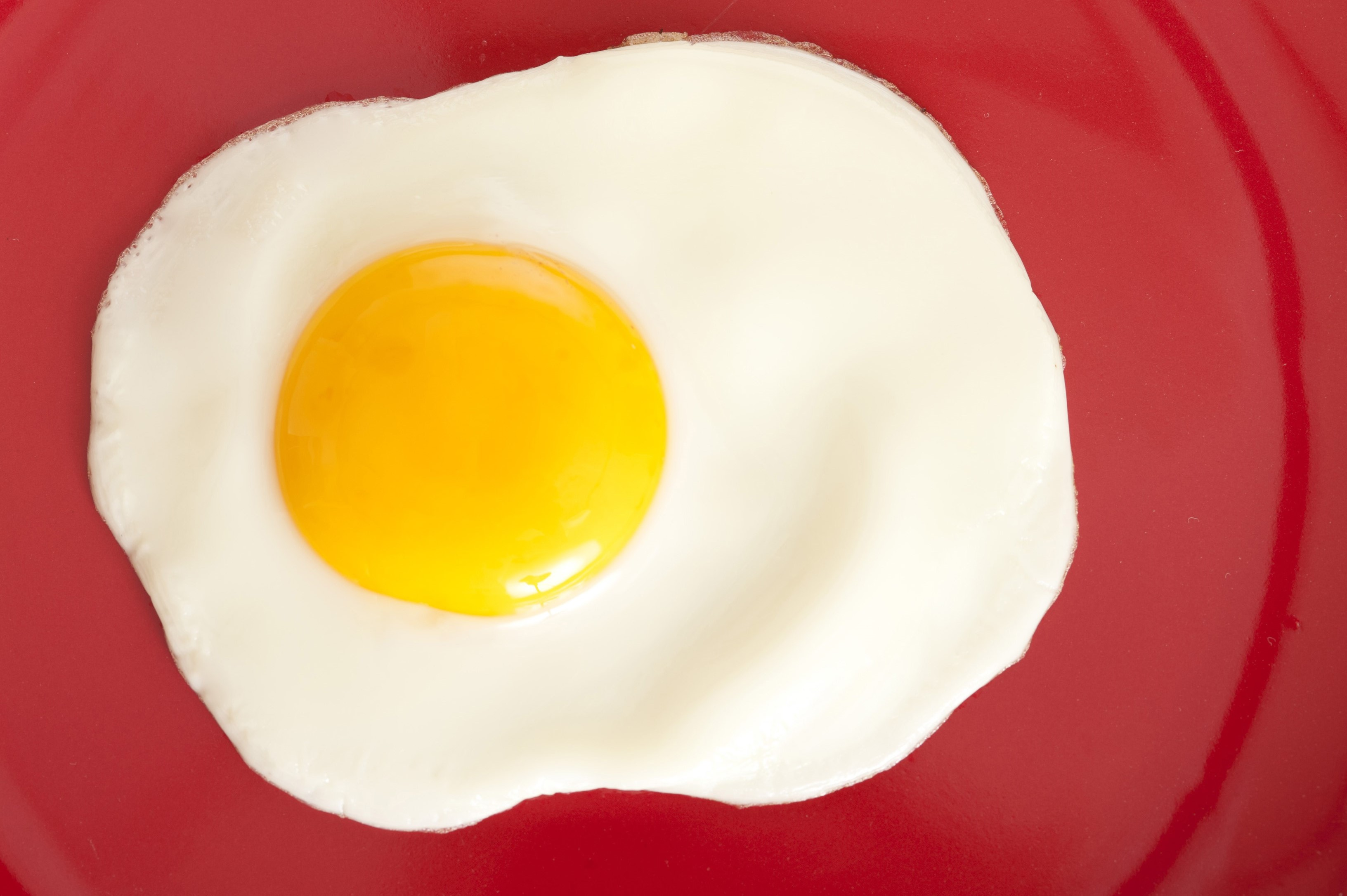 Delicious single fried egg with a deep yellow yolk on a red plate for breakfast, close up overhead view