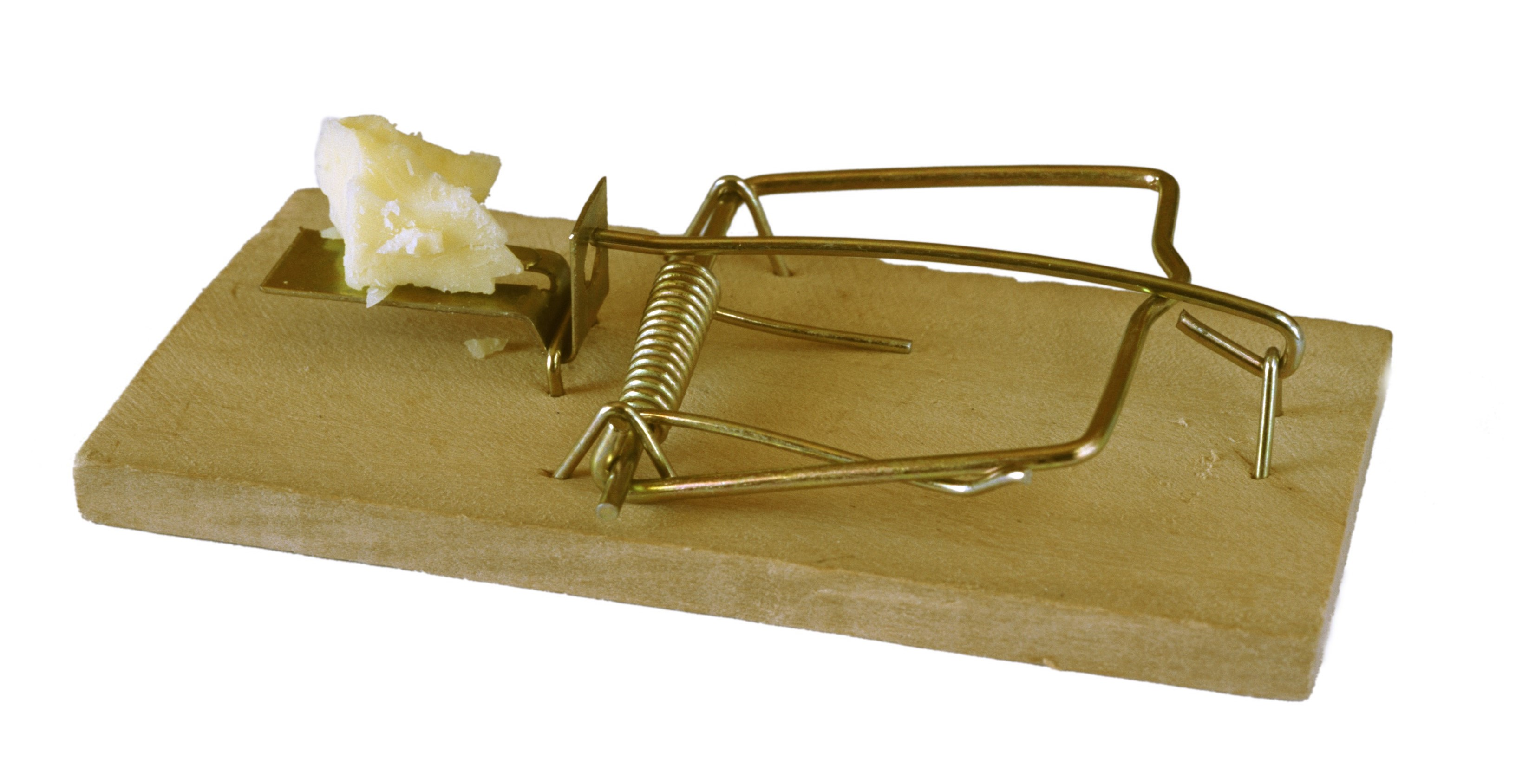 Empty spring loaded mousetrap set ready with a small portion of cheese as bait to catch vermin isolated on white