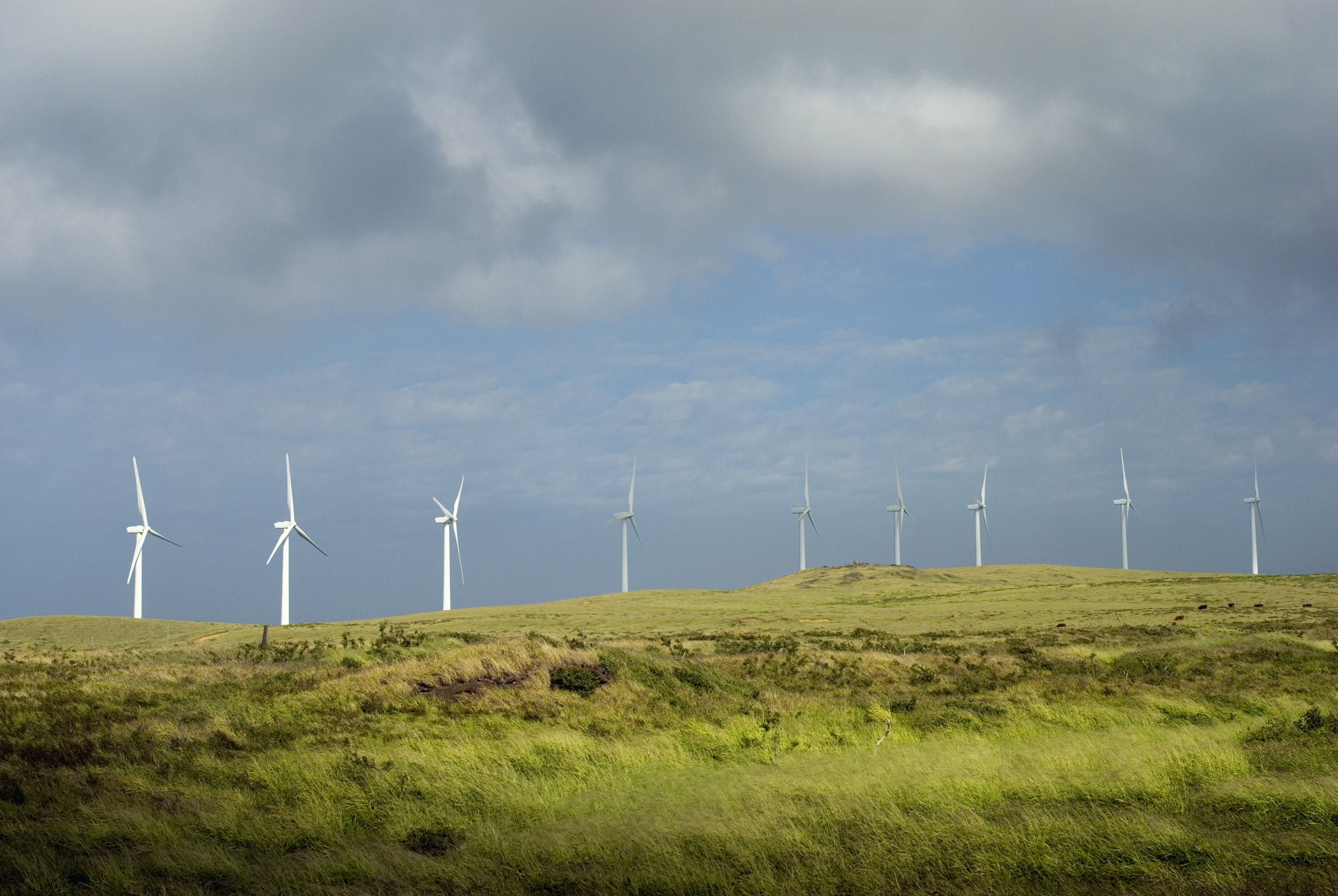 a line of wind power generators on a hilltop
