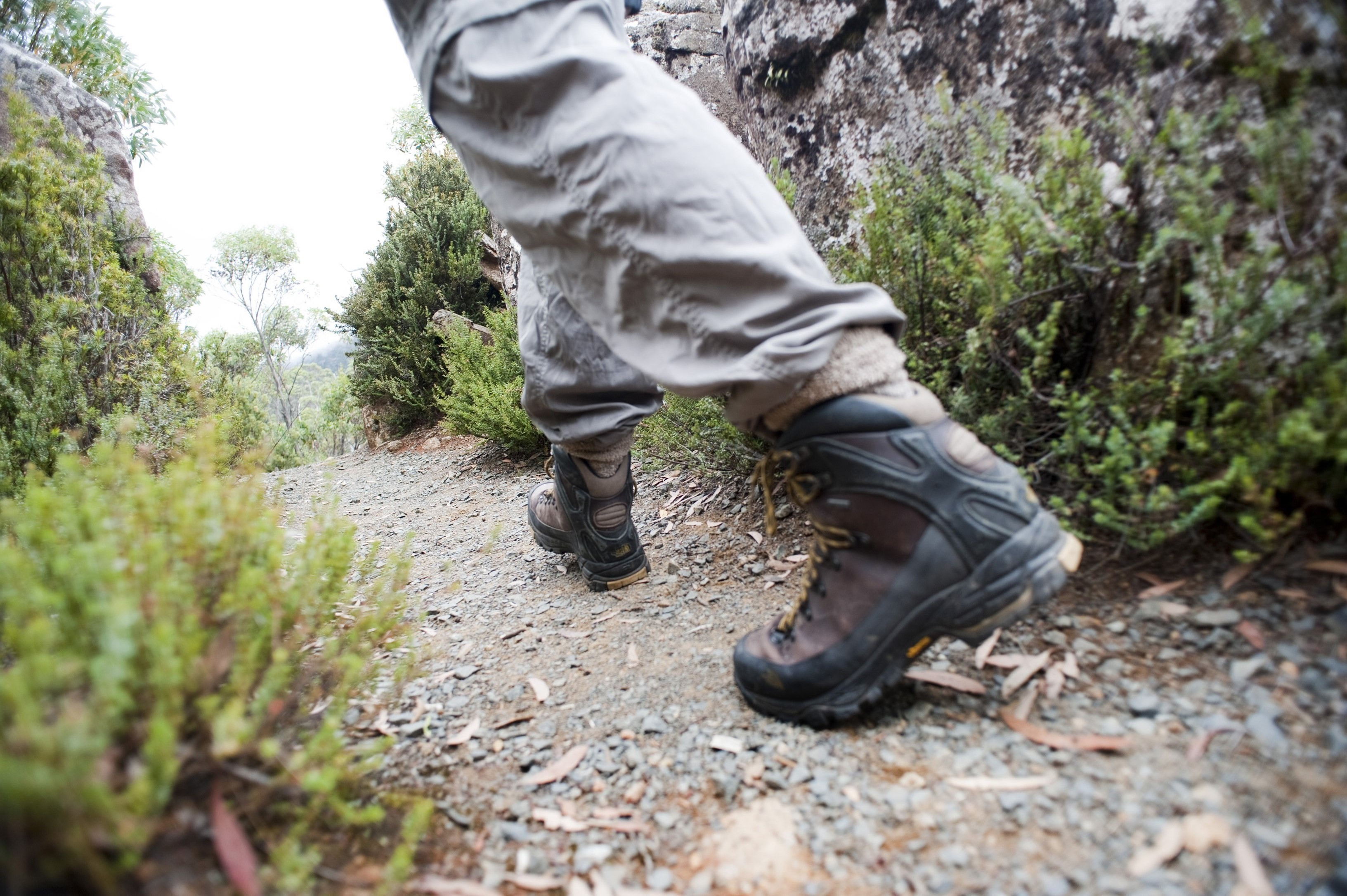 Low angle view of the hiking boots of a person hiking on a wilderness trail or footpath amongst shrubby vegetation