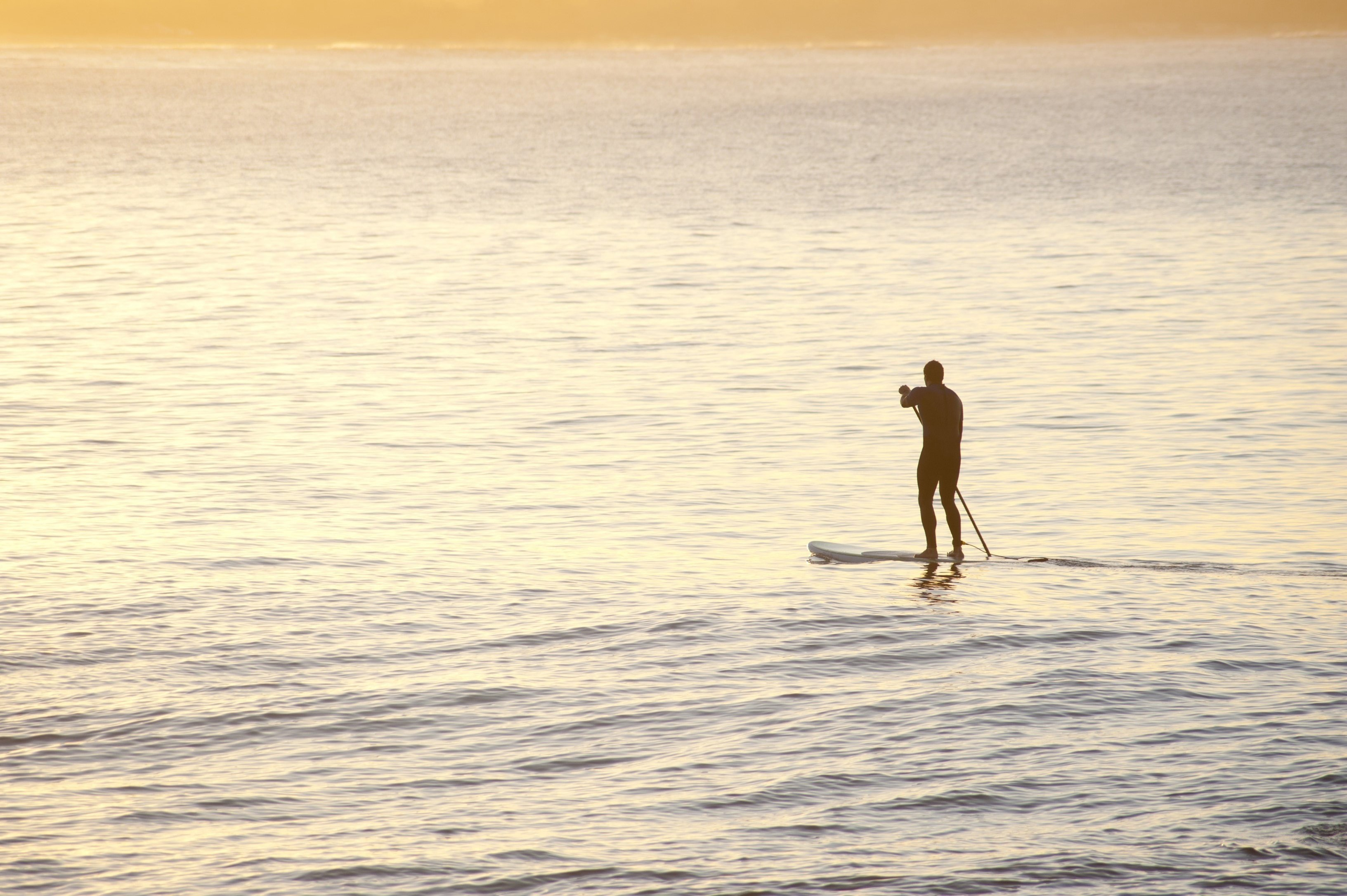 Man on a paddle board paddling across a calm ocean parallel to a sandy tropical beach, silhouetted against bright water with copyspace